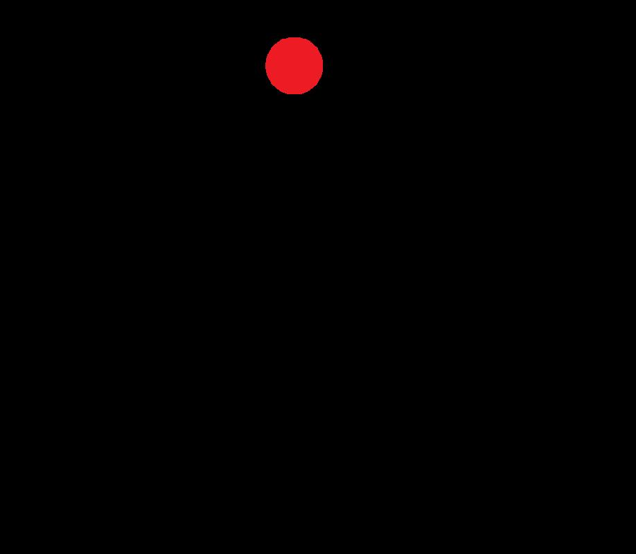 nikovera logo